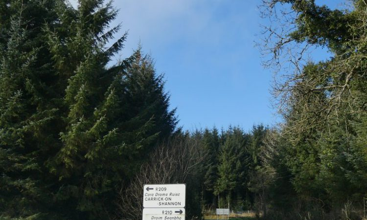 Afforestation in Co. Leitrim: 'It's like a game of monopoly'