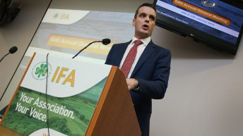 Intervention and other no-deal Brexit measures on the table – IFA