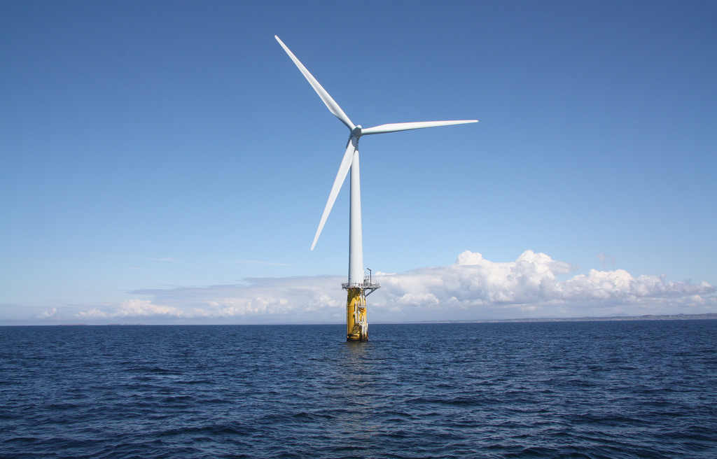 Construction of offshore wind farms could have 'severe impact' on marine life