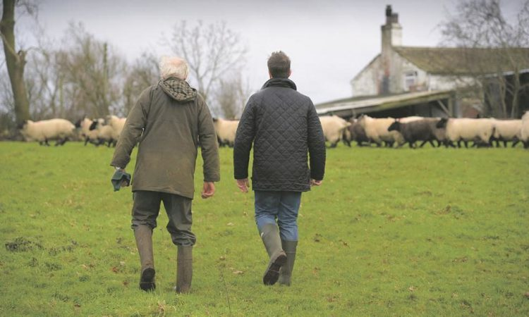 'Difficult conversation to start': Farm succession meeting next week