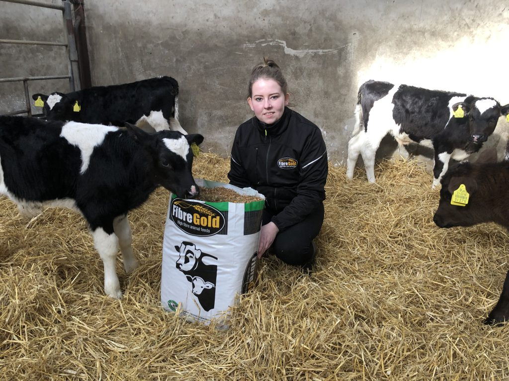 Are you providing your young calves with enough fibre this spring