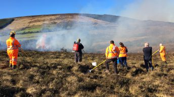 Uncontrolled upland burning condemned by Wicklow Uplands Council