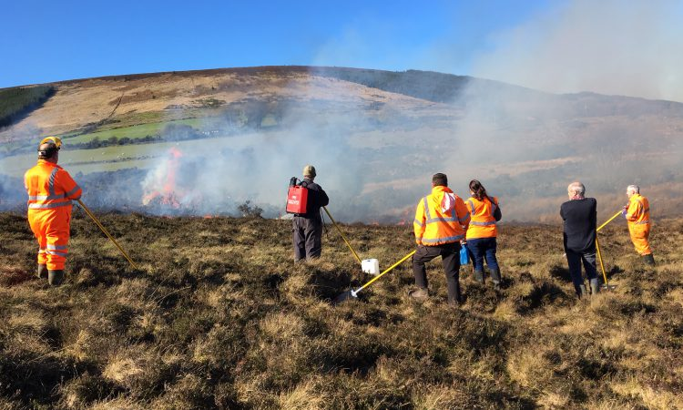 Wicklow group 'disappointed' at burning season deadline