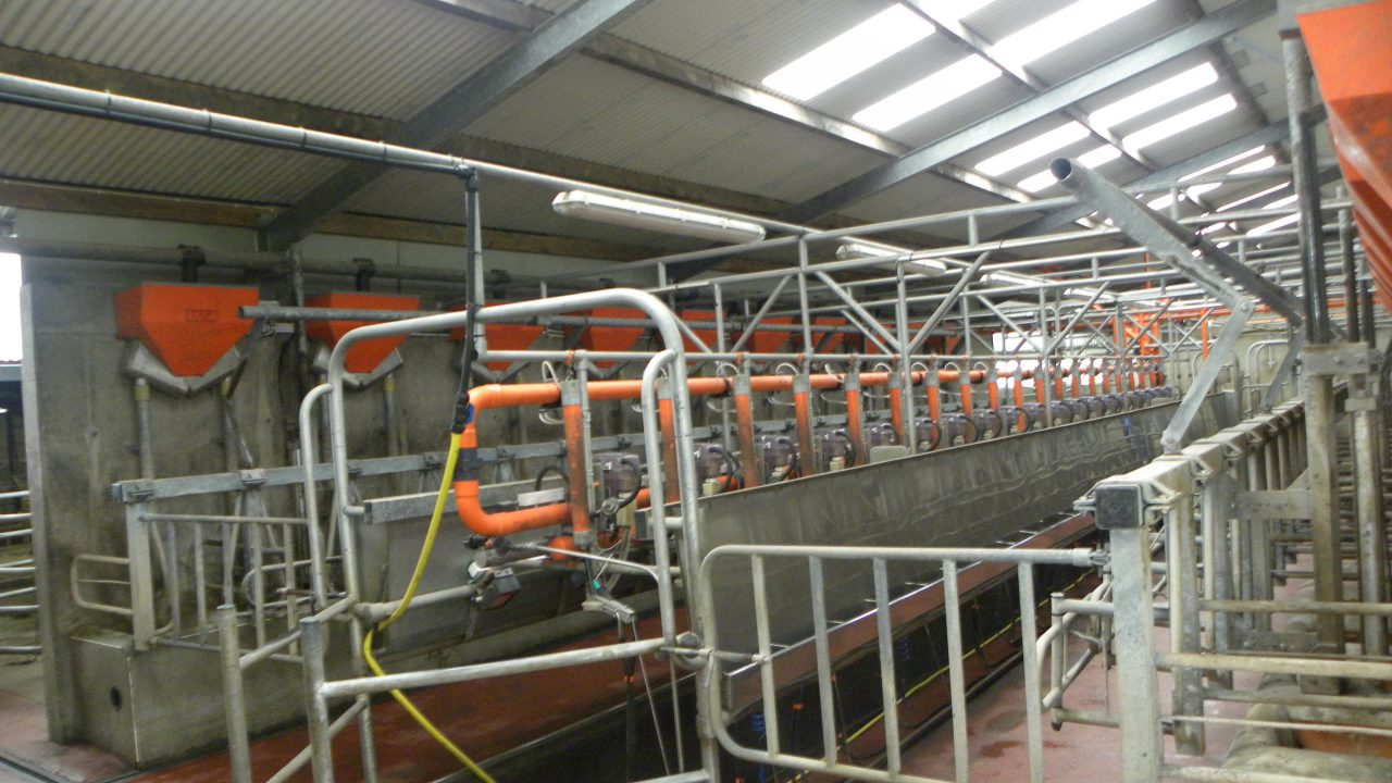 Teagasc launches 'infrastructure workbook' for dairy at Moorepark