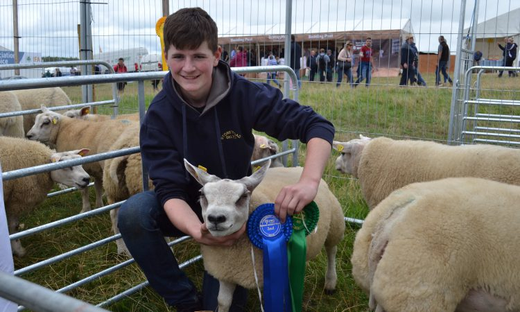 Tullamore Show entrants to feature on last of 6-part series