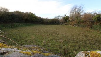 14ac in Co. Galway suits grazing or equestrian pursuits