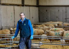 Are you protecting your lambs against pneumonia and clostridial diseases?
