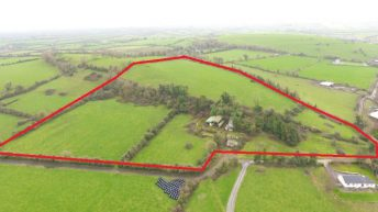 Superb holding ideal for beef, dairying or equestrian uses on 74ac