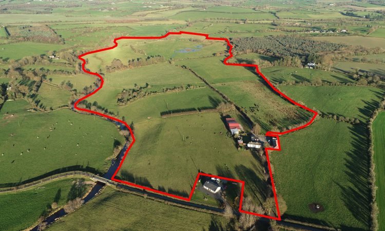 'Very fine' grass farm in one block for sale by public auction in Co. Carlow