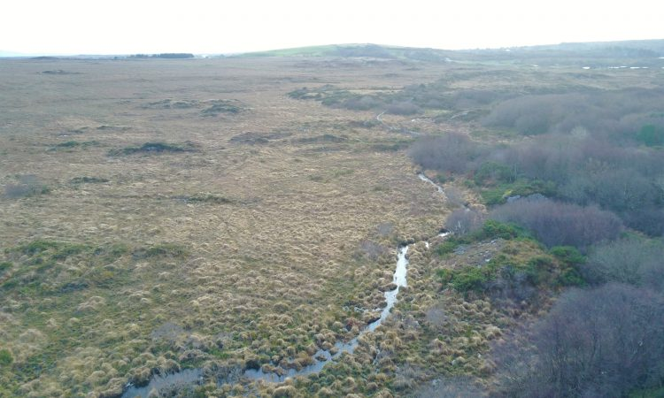 138ac with grazing land potential for sale at €978/ac in Co. Galway
