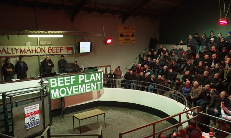 Beef Plan Movement set to stage first official protest