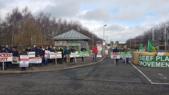 Crowds gather at Beef Plan Movement protest outside TB Forum