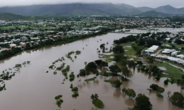 'Hundreds of thousands' of cattle dead in Australian flooding
