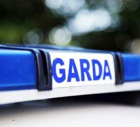 Livestock killed in traffic collision on Meath motorway