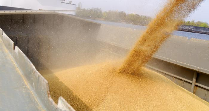 Wheat imports rise by 40% in 2018