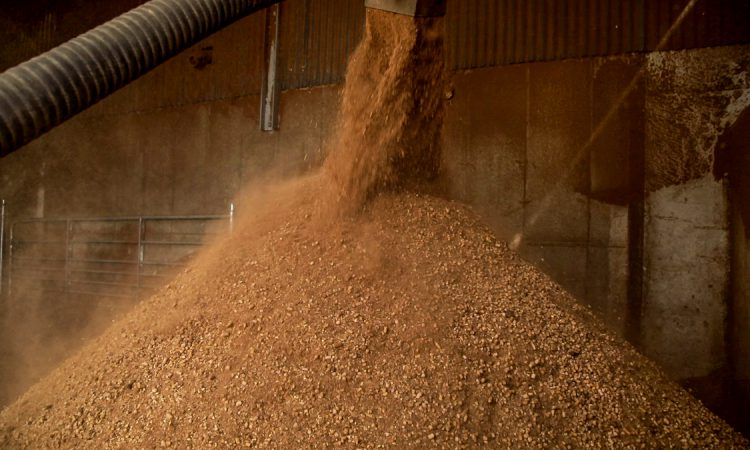 Dairy feed sales on the rise in first quarter of 2020