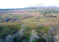 Investment opportunity with site potential on Co. Galway land goes for €1,905/ac