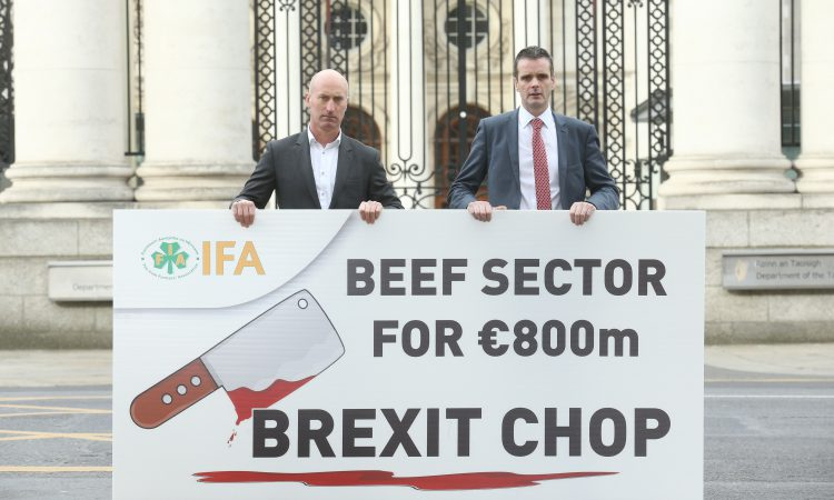 Beef sector facing '€800 million direct hard Brexit hit' – IFA