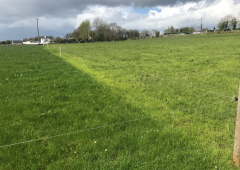 Lengthening the grazing season on a calf-to-beef system