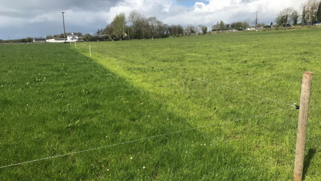 Grass advice: Starting the second round and grass growth