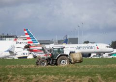 Department of Agriculture 'on airport alert' as ASF threat rises in Ireland