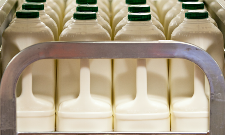 Plans to roll out testing in dairy processors as well as meat plants