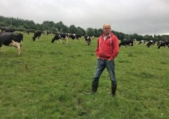 Achieving 2,000kg/ha of milk solids with a low-cost system in Co. Laois