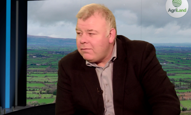 Fitzmaurice slams committee's 'cuckoo cloud' bog proposal