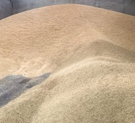 Growers urged to consider alternatives amid claims of propionic acid shortage