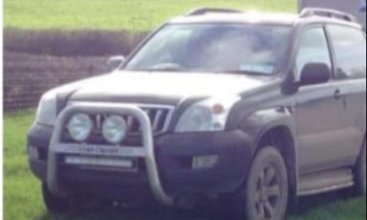 Toyota landcruiser stolen from Kingscourt in overnight heist