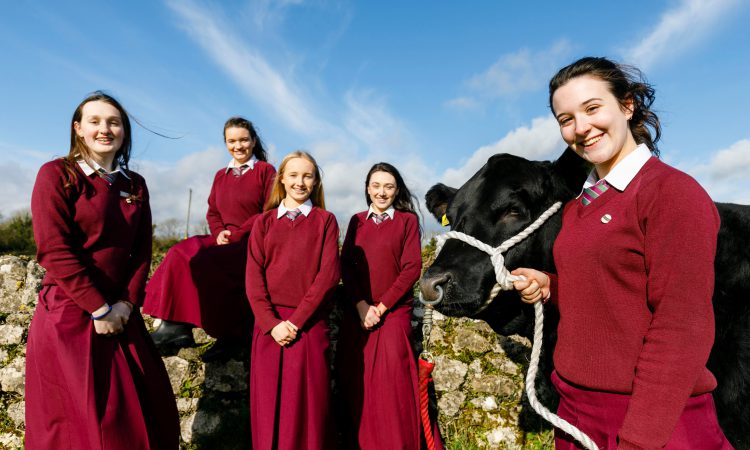 Winners of the 2019 Angus Beef Schools' Competition announced