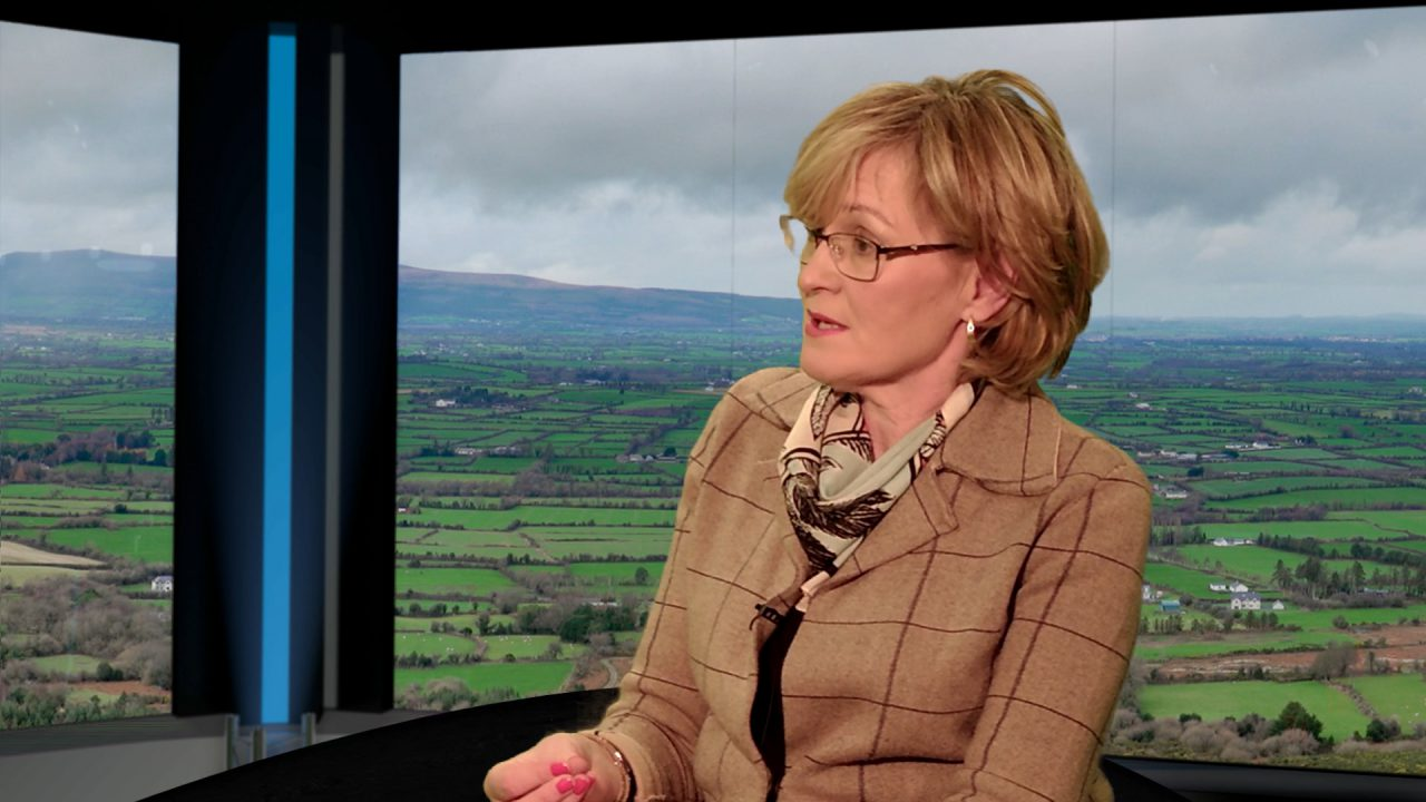 McGuinness becomes first MEP elected in Ireland