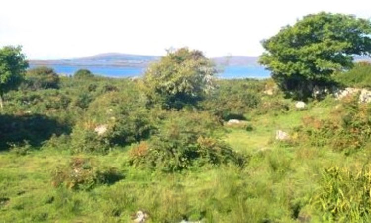 Coastal farm sees guide price of €2,941/ac in Co. Galway