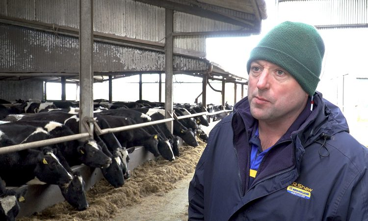 The rise to 300 cows in Co. Tipperary: How this farmer manages his larger herd