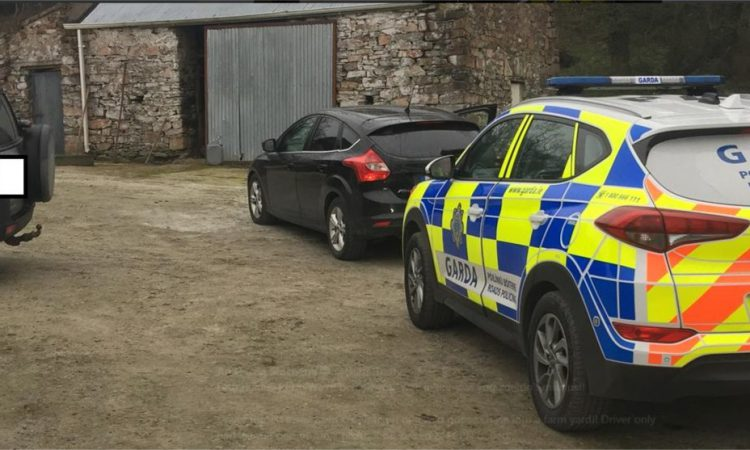 'Wild goose' car chase grinds to halt…in farmyard