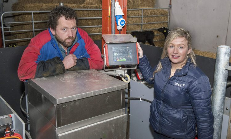 Reaping the benefits of an automatic calf feeding system in Co. Kerry