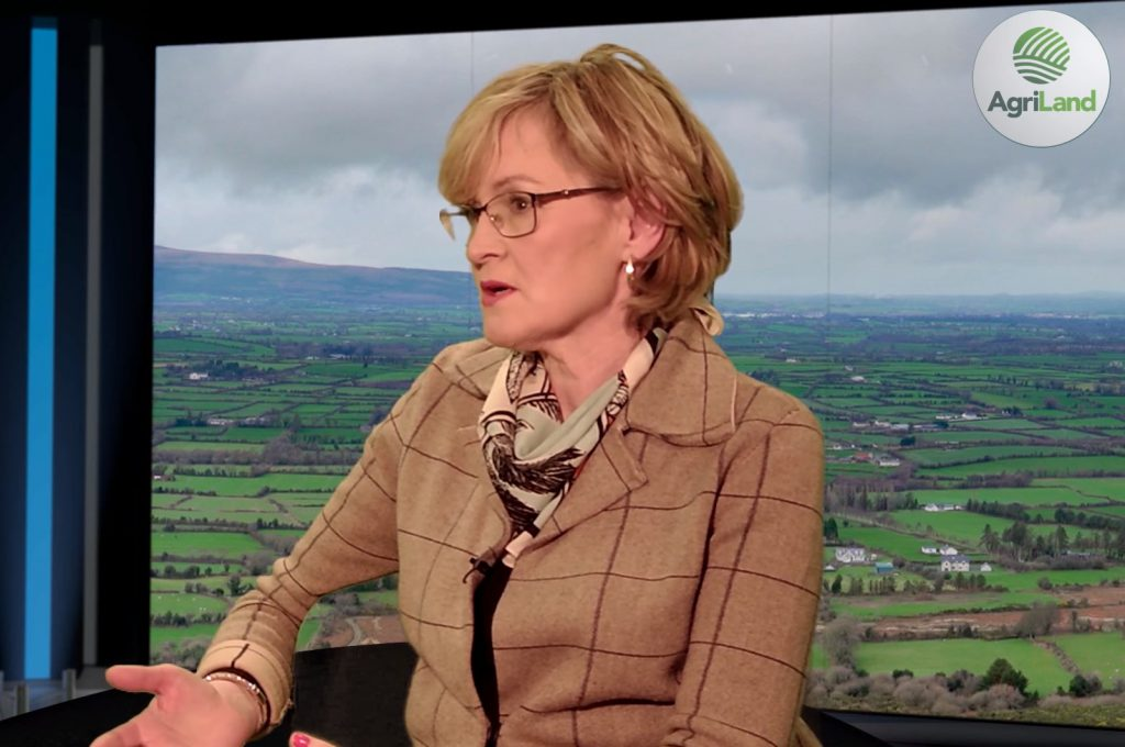 Mairead McGuinness named as Ireland's new European Commissioner
