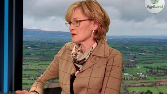 Agri commissioner urged to 'act now' by McGuinness