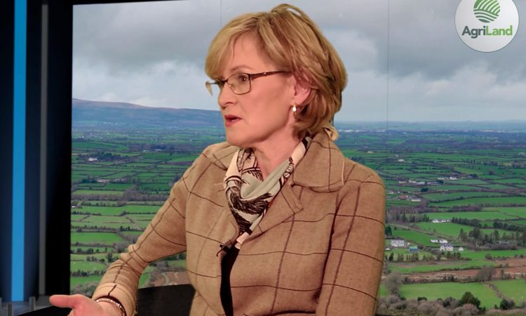 McGuinness to attend ICSA meeting in Cavan tonight