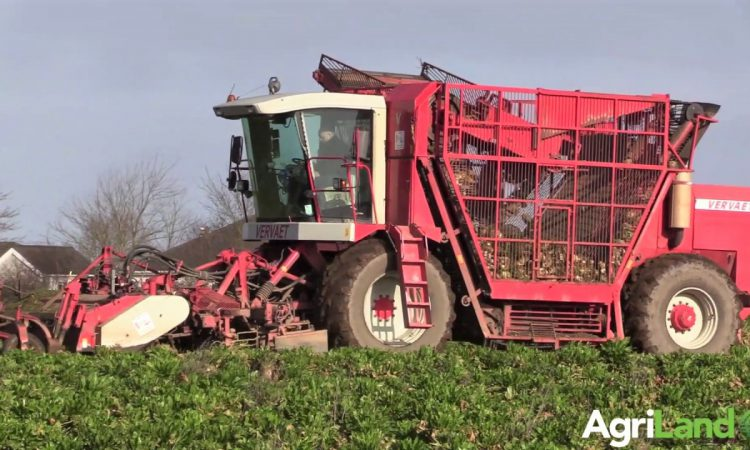 Video: 'Grease it and fill her with diesel – a handy day's work is 20ac'