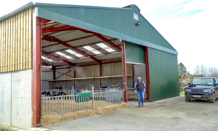 Purchasing 180 calves from local dairy farms in Co. Kilkenny