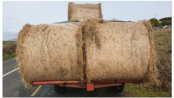 Tractor 'tows' trouble with law for unsecure bales