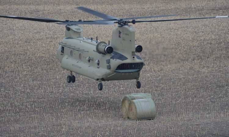 Video: Bales of hay airdropped to flood-stricken cattle by National Guard