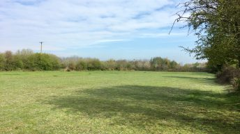 13ac of 'good quality' land for sale at Daars, Sallins