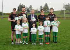 Aurivo commits to 'continued support' for Mayo GAA