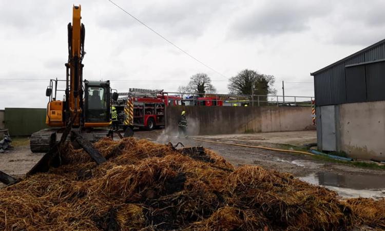 Livestock killed in border farm blaze