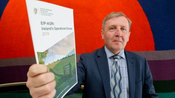 Minister Creed launches environmental publication