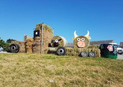 Can you make the cut for Drumshanbo silage spectacle?