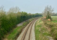 """爱尔兰铁路""""地面覆盖物篱笆""""引起的明显愤怒"""