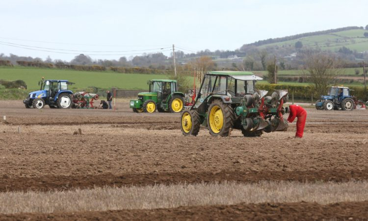 Ireland secures victories on home soil at European Ploughing